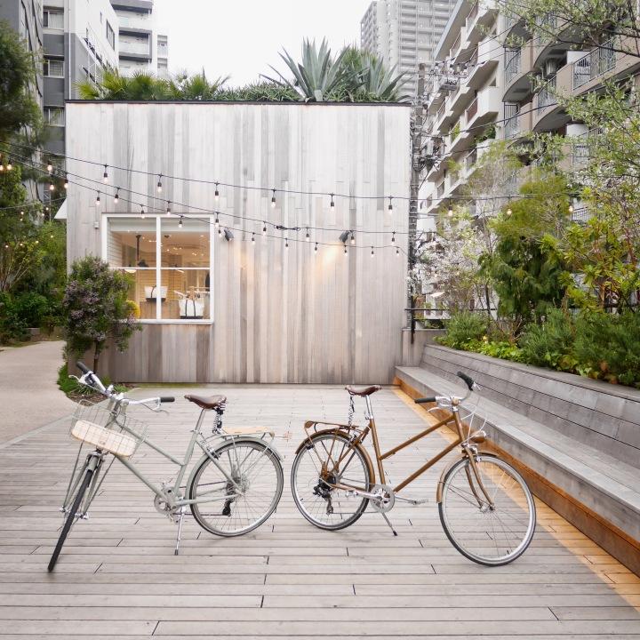 Tokyo's Must-Visit Neighbourhoods:Shibuya